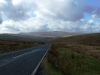 newton-road