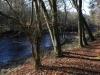 river-ribble-gisbirn-img_5973